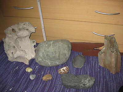 9 Aquarium-Steine 3