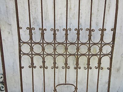 Antique Victorian Iron Gate Window Garden Fence Architectural Salvage Door #381 3