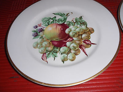 ... Two Vintage Fruit Design Plates By Embassy Usa Vitrified China 8 Inches & TWO VINTAGE Fruit Design Plates By Embassy Usa Vitrified China 8 ...