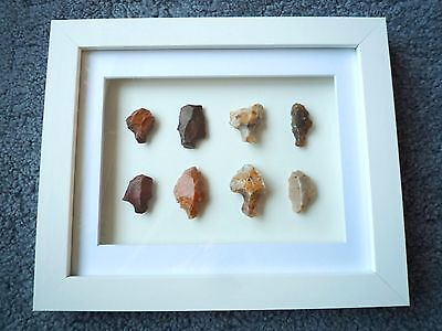 Paleolithic Arrowheads in 3D Picture Frame, Authentic Artifacts 70,000BC (Y004)