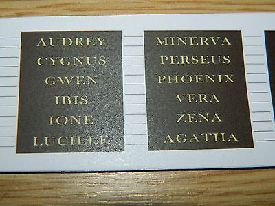 Name decals For Hornby Pullmans VSOE British Pullman train OO Gauge