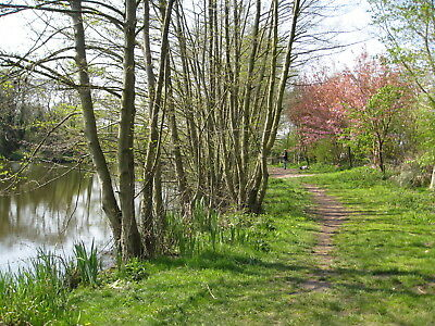 7 Night March April Holiday Cottage Self Catering Norfolk Broads Norwich 7