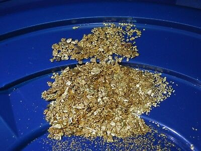 LOADED Gold paydirt concentrates Panning Flakes Nuggets