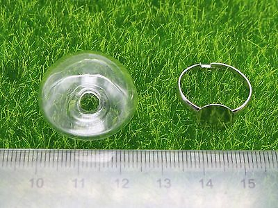 DIY Silver Adjustable Ring with 25mm 28mm Clear Glass Terrarium 1/2 Globe Bottle 2