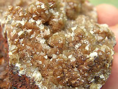 """Minerales """" Fabulosos Cristales De Adamita De Mina Ojuela Mejico  -  6A14 """" 3"""