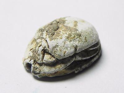 Zurqieh -Af650- Ancient Egypt ,2Nd Intermediate Stone Scarab. 1782 - 1570 B.c