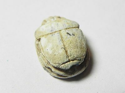 Zurqieh -Af849- Ancient Egypt , 2Nd Intermediate Stone Scarab. 1782 - 1570 B.c 4 • CAD $501.68