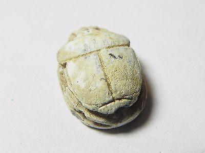 Zurqieh -Af849- Ancient Egypt , 2Nd Intermediate Stone Scarab. 1782 - 1570 B.c 4