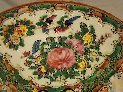 Excellent Early High Quality Painting Chinese Export Rose Medallion Plate 19th c 5