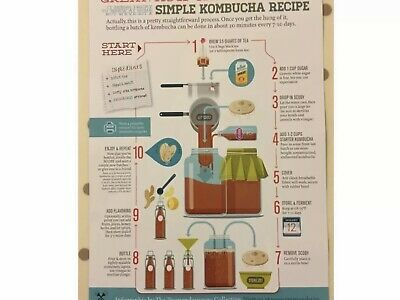 Kombucha Scoby + Printed Instruct's+starter, 100g Inc Packaging. 6