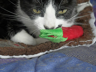 100% Catnip Filled Cat Kitten Toys 2