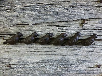 GROUP 6 CAST IRON RESTING BIRD CABINET PULLS DOOR DRAWER DRESSER KNOBS rustic 2