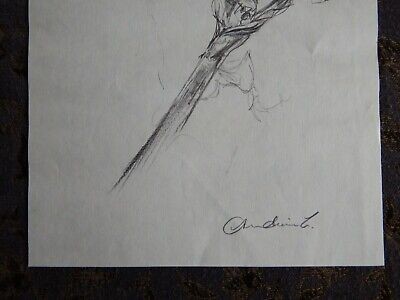 Original Pencil realist expressive line flower drawing of a single iris on paper 8