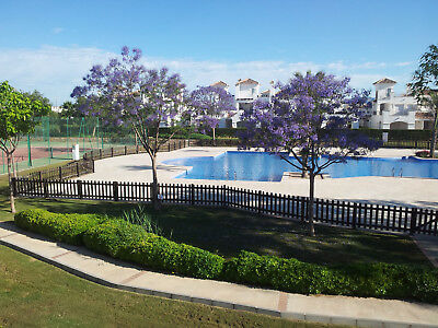 A Self Catering Holiday Rental On A Superb Gated Resort In  Sunny Murcia. Spain. 4