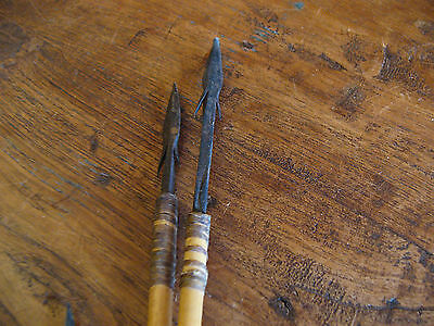 WWII Piosoned Arrows from South America War Peasant Fight Weapon 1943 RARE!! 8