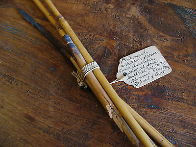 WWII Piosoned Arrows from South America War Peasant Fight Weapon 1943 RARE!! 5