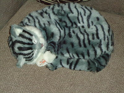Realistic Life-Like Grey Sleeping Cat Fooled Many People- House Trained -White 3