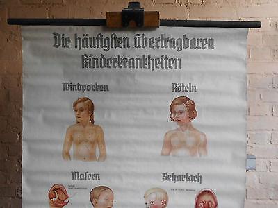 1 x Die häufigsten übertragbaren Kinderkrankheiten / Lehrtafel (1508), gebr