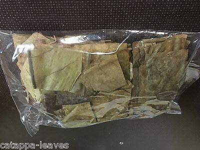NANO PADS - Seemandelbaumblätter in kleinen Portionen Catappa Leaves Nano Cube 2
