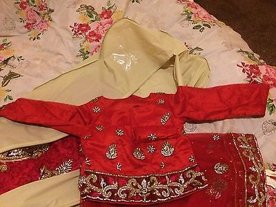 Indian Bridal Wedding Lengha Red Net Pink Thread With Gold & Silver Embroidery 3