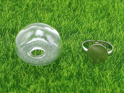 DIY Silver Adjustable Ring with 25mm 28mm Clear Glass Terrarium 1/2 Globe Bottle 5