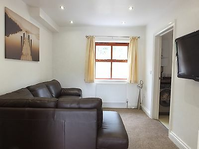 Iron Man Tenby September 2020 - 5 star Luxury 6 Bed House 1 Mile from the Beach 4