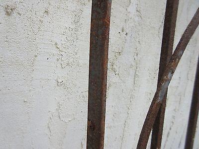 Antique Victorian Iron Gate Window Garden Fence Architectural Salvage #791 5
