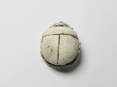 Zurqieh -Af302- Ancient Egypt , Faience Button Scarab. 600 - 300 B.c 4