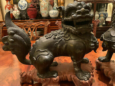 A Pair Large and Rare Chinese Ming Dynasty Bronze Foolions with Rosewood Stands. 5