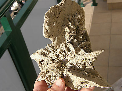 "Minerales "" Fantastica Rosa Del Desierto De Baza (Granada)  -  4A13 "" 2"