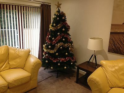 2019/20 Christmas in Pembrokeshire  , 5 star Luxury , 1 Mile from the beach 6