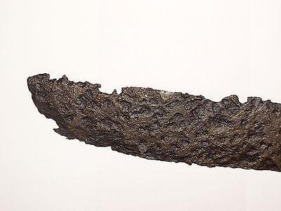 Viking  tool scythe. ca 8-10 century AD. 2