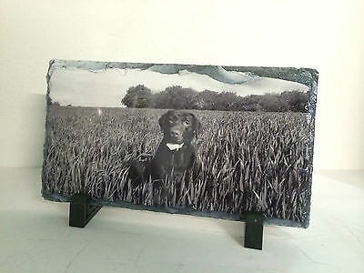 Pet Memorial Slate & Stand, Personalised Photo Plaque Dog Cat etc Have ANY IMAGE 2