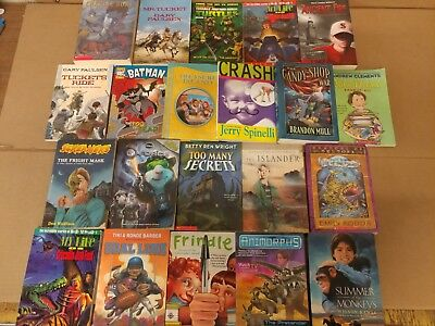 Lot of 20 Chapter Books for BOYS Youth Early Reader Young Adults Children RANDOM 8