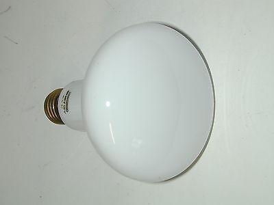 lampe éclairage studio PHOTOCRESCENTA 230V/150W PHILIPS dans la boite d'origine