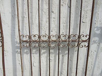 Antique Victorian Iron Gate Window Garden Fence Architectural Salvage Door #341 3
