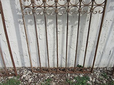 Antique Victorian Iron Gate Window Garden Fence Architectural Salvage Door #341 4