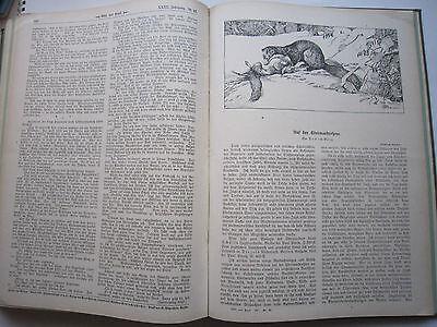 """""""Wild und Hund""""  23. Jahrgang Januar - Dezember 1917, Hege,Pirsch 7"""