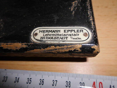 Altes Ohrmodell vergrößert dargestellt, Gipsmodell, H. Eppler Rudolstadt, gebr.