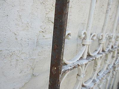 Antique Victorian Iron Gate Window Garden Fence Architectural Salvage #838 6