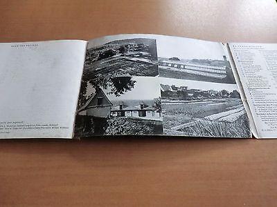 Gartenkatalog Kayser&Seibert 1959/60 Blumen Stauden Kräuter Sorten Beschreibung