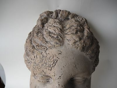 EARLY 1900s ROMAN BUST OR GREEK GODDESS NY MUSEUM REPRODUCTION NATURAL HISTORY 8