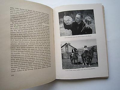 """""""Auf Bergwild in den Rocky Mountains""""Jagderlebnisse von Messany,1941 10"""