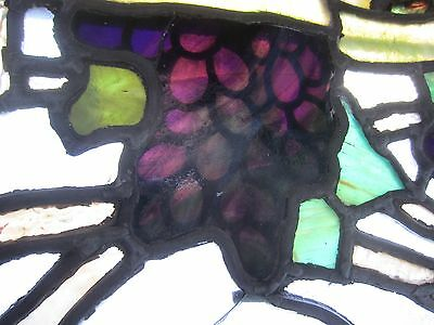 ~ Antique American Stained Glass Window ~ Grapevines ~ Architectural Salvage ~ 7