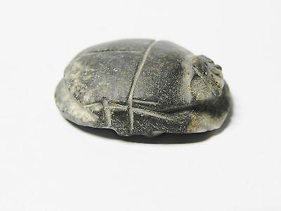 Zurqieh - Af42- Ancient Egypt. Diorite Button Scarab. 600 - 300 B.c 3