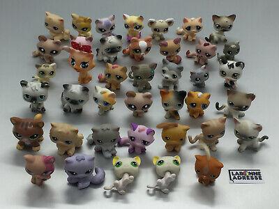 Lps Littelest Pet Shop Chat Cat 40 Ex. Au Choix Choose Petshop Little Pet Shop 3