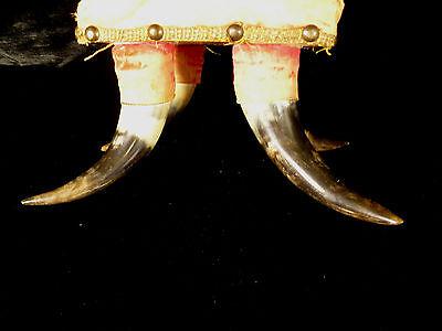 Rare Antique American Western Cowboy Steer Cow Horn Footstool - Circa 1880 7