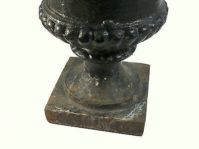 Antique Pair of Capagna Form Cast Iron Garden Urns - U.S. - Late 19th Century