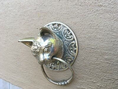 Small CAT head heavy Door handle SOLID brass old style polished ring pull 7cm  B 6
