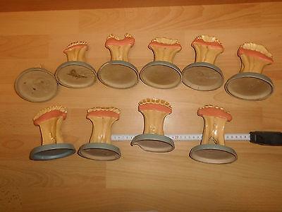 10 alte Modelle Unterkiefer / Abgüsse Rind, von 14 Tagen bis 18 Jahre, gebr.
